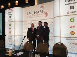 AMCHAM Presentation 15